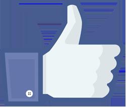 Facebook_like_thumb copy.sm